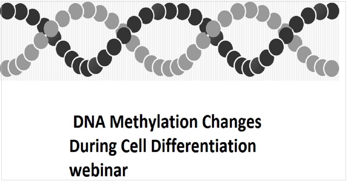 DNA Methylation Changes During Cell Differentiation webinar