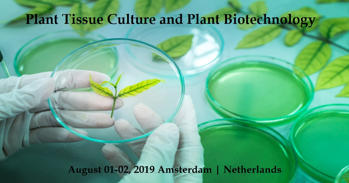 Plant Tissue Culture and Plant Biotechnology