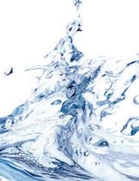 A CASE FOR ONLINE WATER BIOBURDEN ANALYZERS